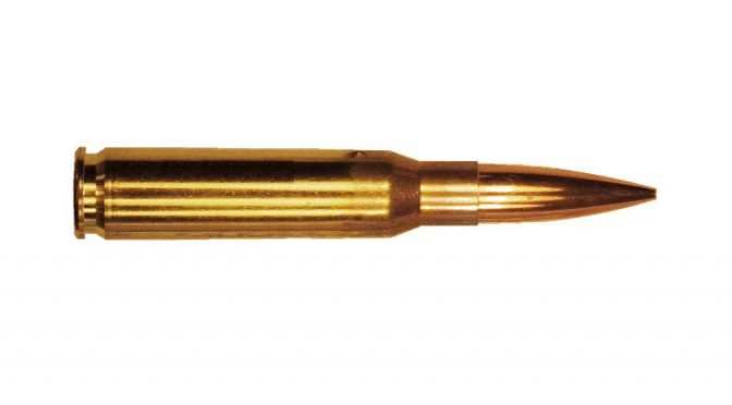 ammunition, 308 win