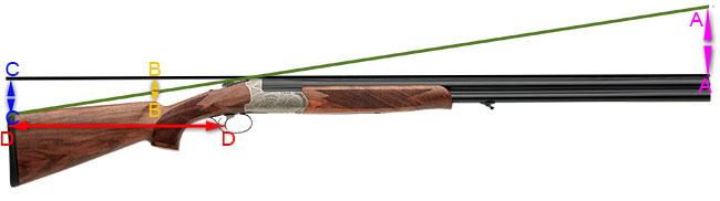Shotgun, hunting, hunters, rifle fit