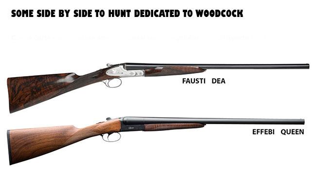 side by side, shotgun, hunting