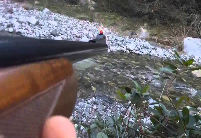 Wild Boar autoloading carbine, rifled, hunting, Benelli, Browning, Remington, Winchester
